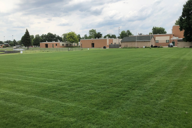 New laid turf on a field