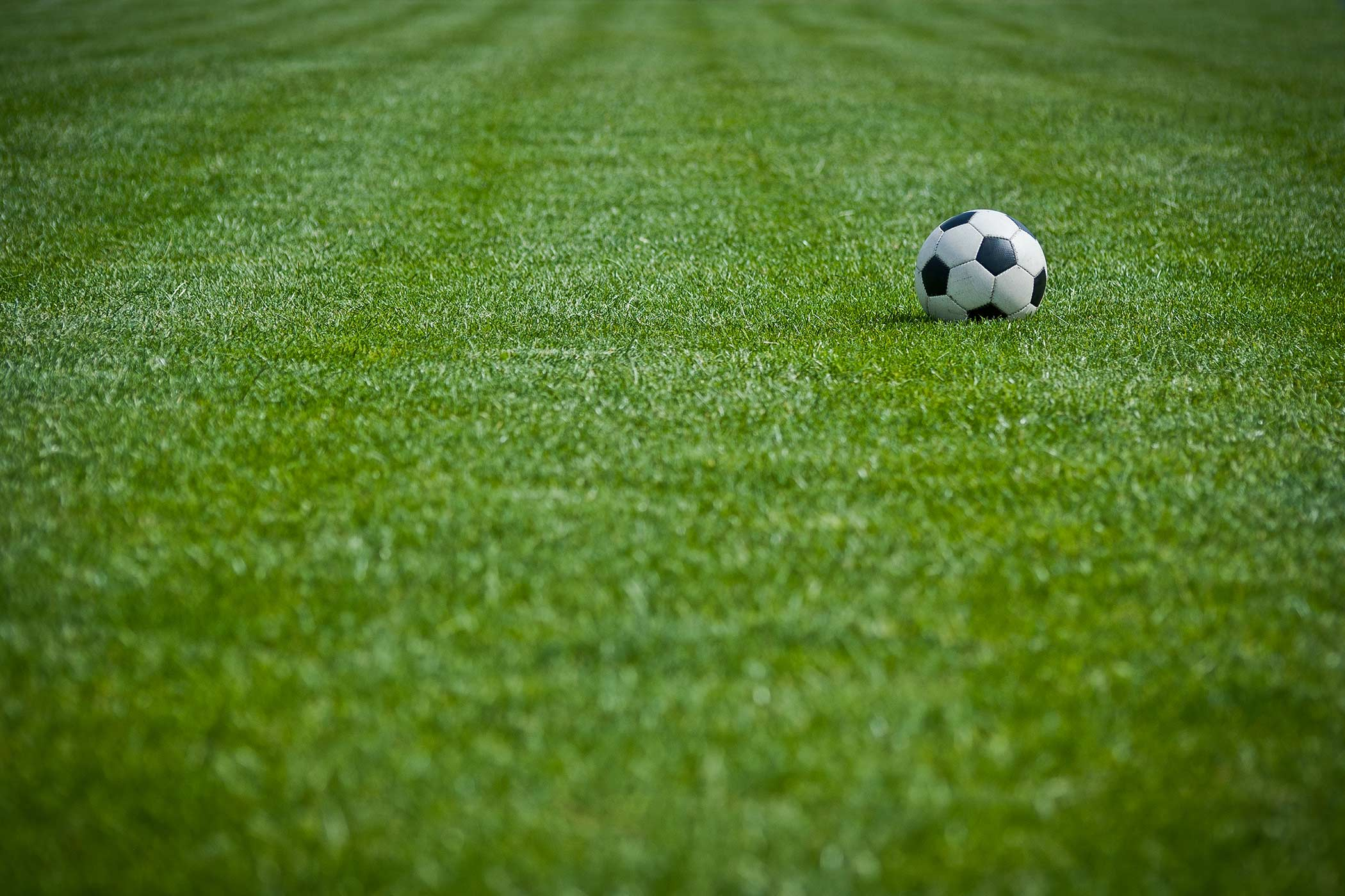 A green soccer field with a soccer ball
