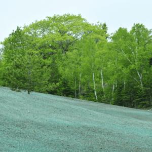 Hydroseeding on a property
