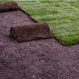 Rolled up sod being laid
