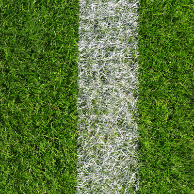 close up of grass on a sports field